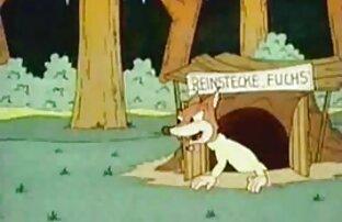 شیک, عکس سگسی متحرک سبزه, با